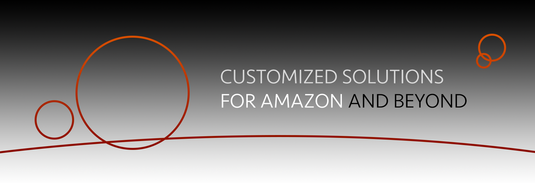 Customized solutions for Amazon and beyond